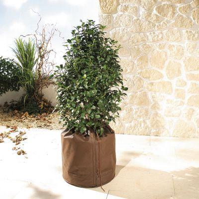 Diverse drivhus/hage